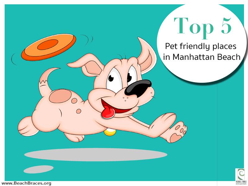manhattan beach pets